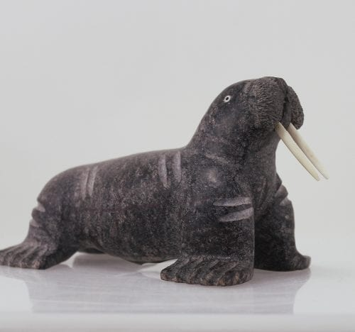 Wonderful walrus carved by well known Inuit artist Daniel Shimout.