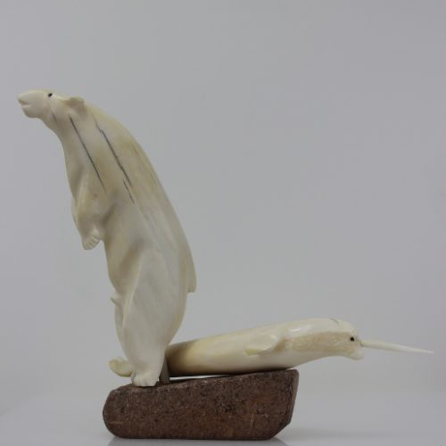 Polar Bear and Narwhal by Timothy Jar from Corral Harbor