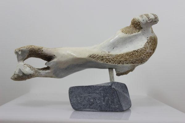 Walrus by Timothy Jar from Sallit/Coral Harbour carved in Whalebone