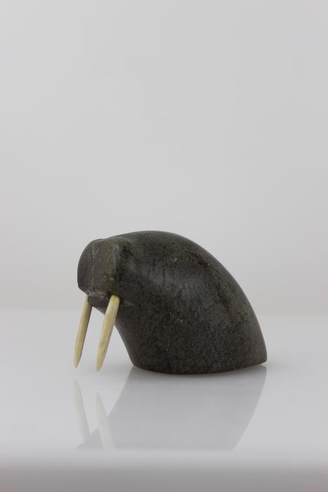 Walrus Head with Bone Tusks by Unknown Artist