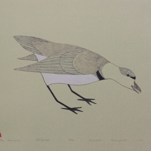 Kopinawa by Kananginak Pootoogook from Kinngait -- Cape Dorset