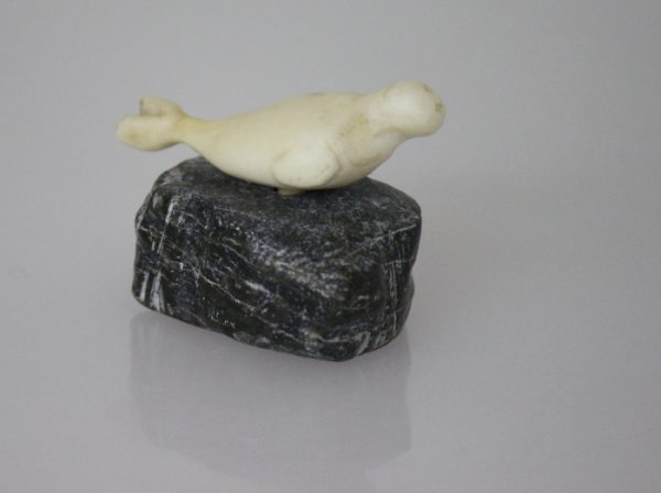 Ivory Seal by Unidentified