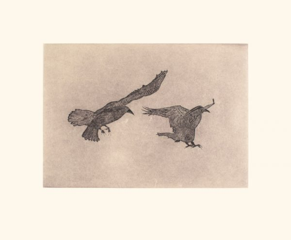 Misty Ravens by Olooreak Etungat 2021 Dorset Print Collection