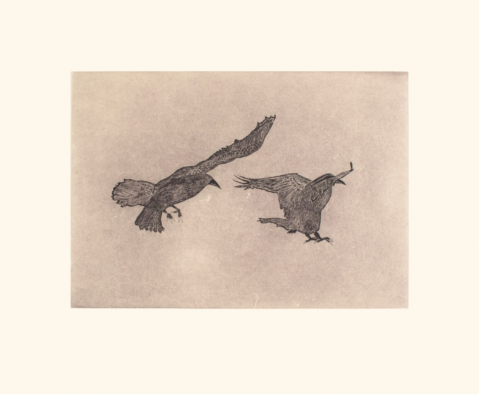 OLOOREAK ETUNGAT Misty Ravens Cape Dorset Print 2021