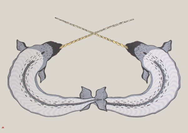 Sparring Narwhals by Quvianaqtuk Pudlat 21-15 2021 Dorset Print Collection